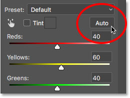 Clicking the Auto button. Image © 2017 Photoshop Essentials.com