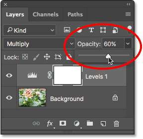 Lowering the opacity of the adjustment layer to fine-tune the brightness. Image © 2017 Photoshop Essentials.com