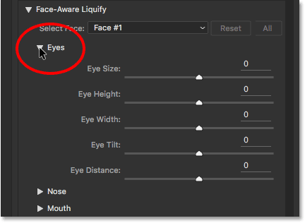 The Eye Size, Eye Height, Eye Width, Eye Tilt, and Eye Distance sliders for Face-Aware Liquify. Image © 2016 Steve Patterson, Photoshop Essentials.com