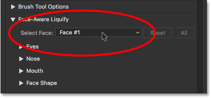 The Select Face option in Face-Aware Liquify. Image © 2016 Steve Patterson, Photoshop Essentials.com