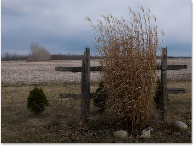 Tall grass against an open field. Image © 2015 Steve Patterson, Photoshop Essentials.com