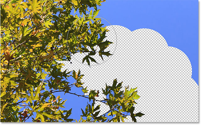 The Background Eraser in Photoshop with the Once sampling option selected. Image © 2016 Photoshop Essentials.com