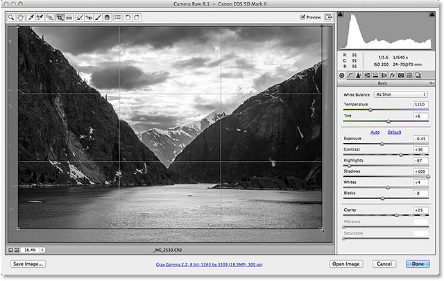 Cropping a grayscale image in Adobe Camera Raw 8. Image © 2013 Steve Patterson, Photoshop Essentials.com