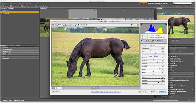 Adobe Bridge is still visible behind the Camera Raw dialog box. Image © 2013 Steve Patterson, Photoshop Essentials.com