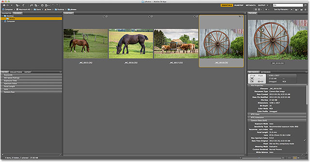 Returning to Adobe Bridge after exiting Camera Raw. Image © 2013 Steve Patterson, Photoshop Essentials.com