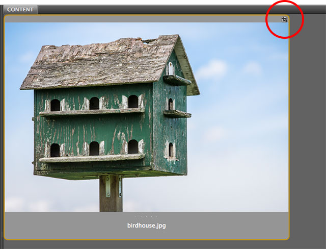 Adobe Bridge showing the crop icon in the image thumbnail. Image © 2013 Steve Patterson, Photoshop Essentials.com