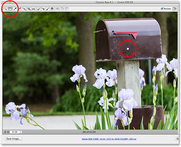 Selecting and using the Hand Tool in Camera Raw. Image © 2013 Photoshop Essentials.com