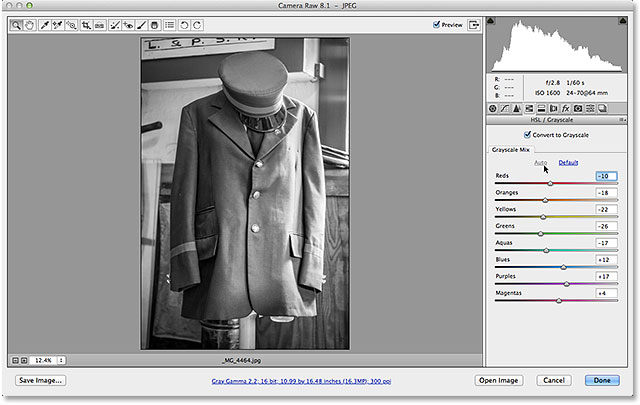 A color photo has been converted to grayscale in Camera Raw. Image © 2013 Steve Patterson, Photoshop Essentials.com