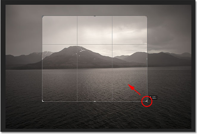 Click and drag the handles to resize the crop box. Image &copy; 2012 Photoshop Essentials.com