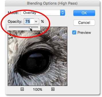 Lowering the opacity of the High Pass filter in the Blending Options dialog box. Image © 2016 Photoshop Essentials.com