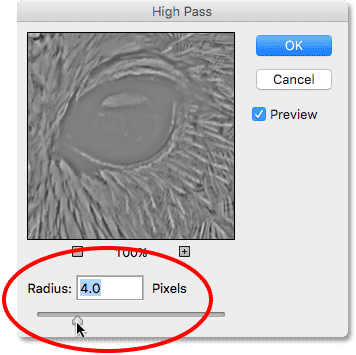Increasing the Radius value in the High Pass filter dialog box. Image © 2016 Photoshop Essentials.com