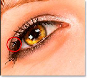 Amostra de uma cor ao redor dos olhos