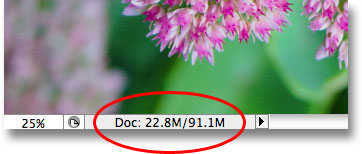The Photoshop document is now four times its original file size. Image © 2009 Photoshop Essentials.com.