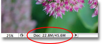 The size of the Photoshop document has now doubled. Image © 2009 Photoshop Essentials.com.