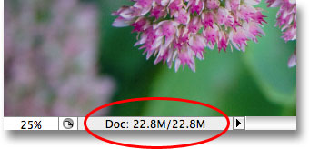 The file size has not increased after adding the Levels adjustment layer. Image © 2009 Photoshop Essentials.com.