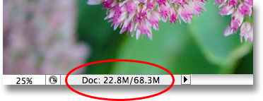 The size of the Photoshop document has now tripled. Image © 2009 Photoshop Essentials.com.