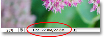The file size of the Photoshop document remains unchanged. Image © 2009 Photoshop Essentials.com.
