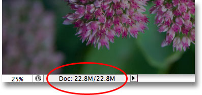 The document window displays the current size of the Photoshop document. Image © 2009 Photoshop Essentials.com.