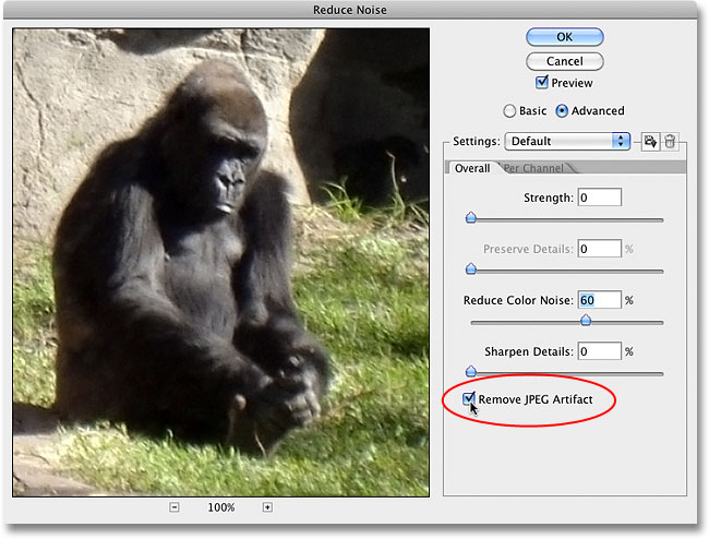 The Remove JPEG Artifact option in the Reduce Noise dialog box. Image © 2010 Photoshop Essentials.com