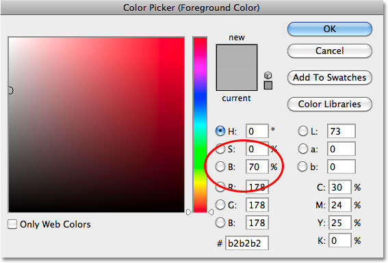 Memilih abu-abu terang di Color Picker di Photoshop. Image © 2010 Photoshop Essentials.com.