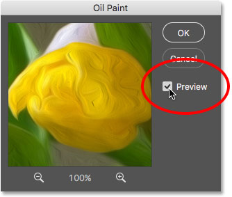 The Preview option in the Oil Paint filter dialog box. Image © 2016 Photoshop Essentials.com.