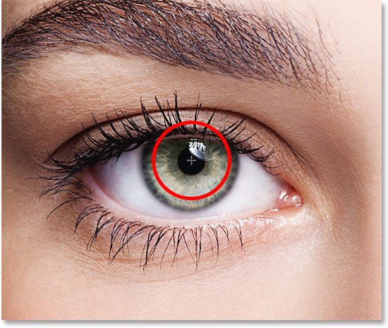 Positioning the mouse cursor in the center of the eye. Image © 2016 Photoshop Essentials.com.