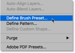 Selecting the Define Brush Preset command from under the Edit menu.