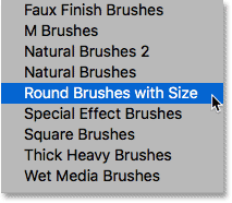 Choosing the Round Brushes with Size brush set.