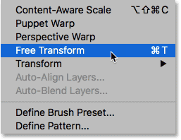 Selecting the Free Transform command from under the Edit menu.