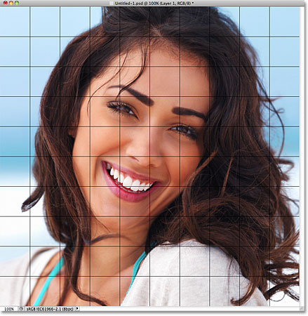 The photo appears inside the grid document in Photoshop. Image © 2011 Photoshop Essentials.com.