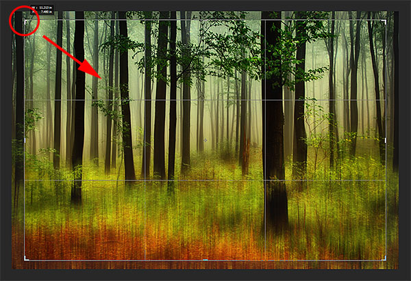 Resizing the cropping border. Image © 2013 Photoshop Essentials.com