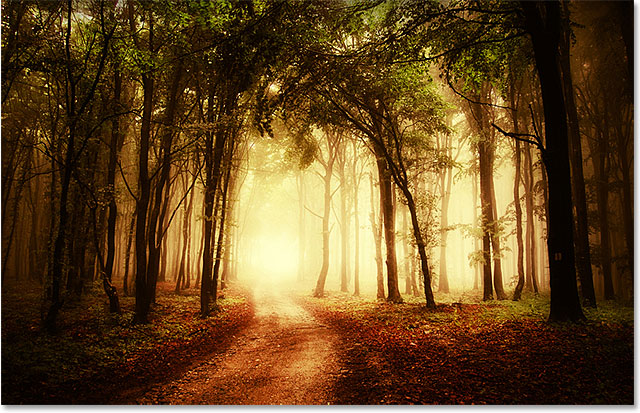 Road through a golden forest image licensed from Shutterstock by Photoshop Essentials.com