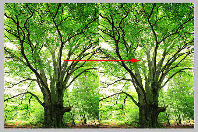 Dragging the image on Layer 1 into the new canvas area. Image © 2010 Photoshop Essentials.com.