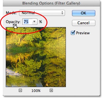 The Blending Options for the Smart Filter in Photoshop CS6. Image © 2012 Photoshop Essentials.com.