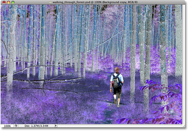 The colors in the photo have been inverted. Image © 2009 Photoshop Essentials.com.