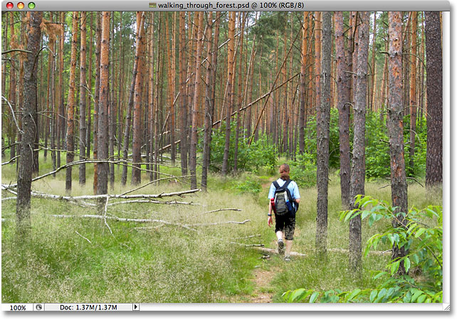 A photo of someone walking through the forest. Image licensed from iStockphoto by Photoshop Essentials.com.