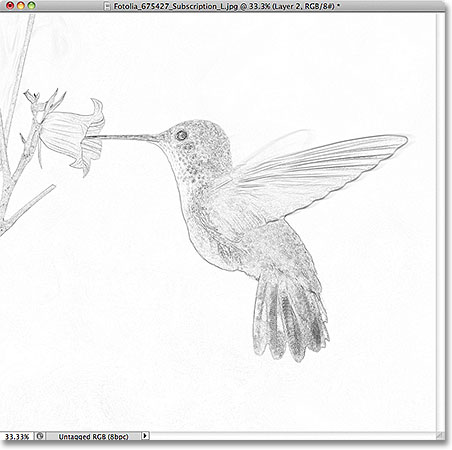 Photoshop photo to sketch effect. Image &copy; 2011 Photoshop Essentials.com.