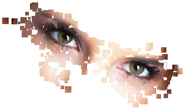 Revealing the photo through randomly sized and scattered squares. Image © 2011 Photoshop Essentials.