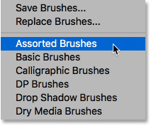 Choosing the Assorte Brushes set from the menu.