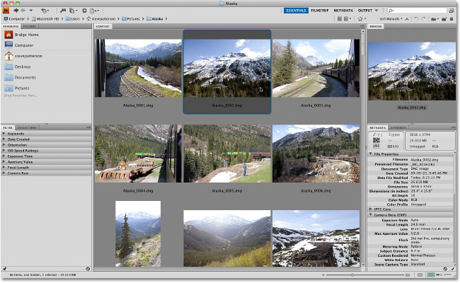 Adobe Bridge CS4 displaying the downloaded images.