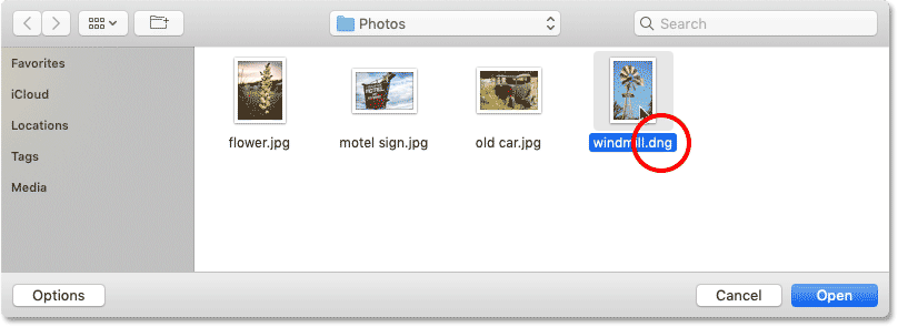 Selecting a raw file to open in Photoshop.