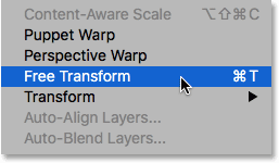 Choosing the Free Transform command from under the Edit menu.