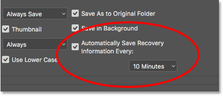 The Auto Save option in the Photoshop Preferences.