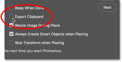 The Export Clipboard option in the Photoshop Preferences.