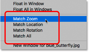 The Match Zoom, Match Location, Match Rotation and Match All options in Photoshop.