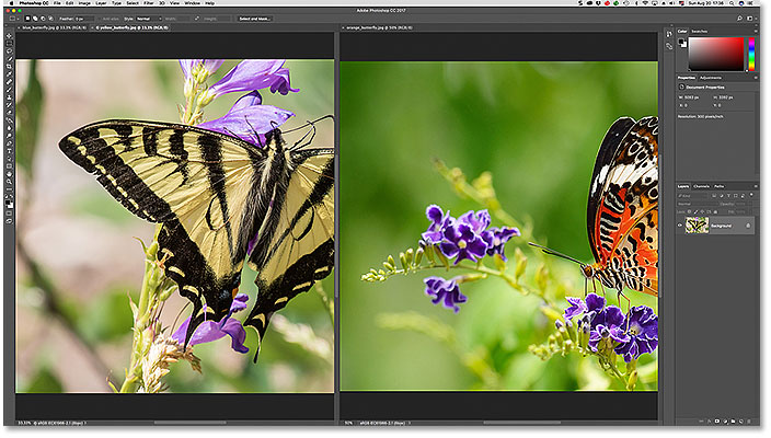Two images grouped together into oen document window in Photoshop.