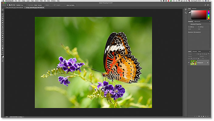 Two images open as tabbed documents in Photoshop.