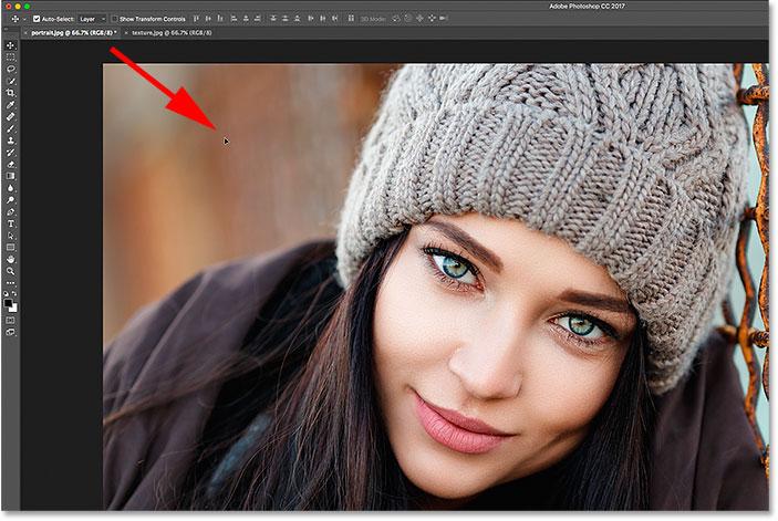 Faire glisser l'image de l'onglet vers la fenêtre du document.