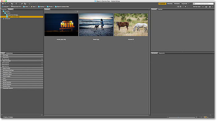 The Content panel in Adobe Bridge displaying thumbnails of the images.