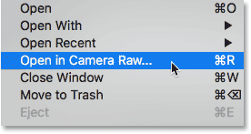 Choosing the Open in Camera Raw command in Adobe Bridge.